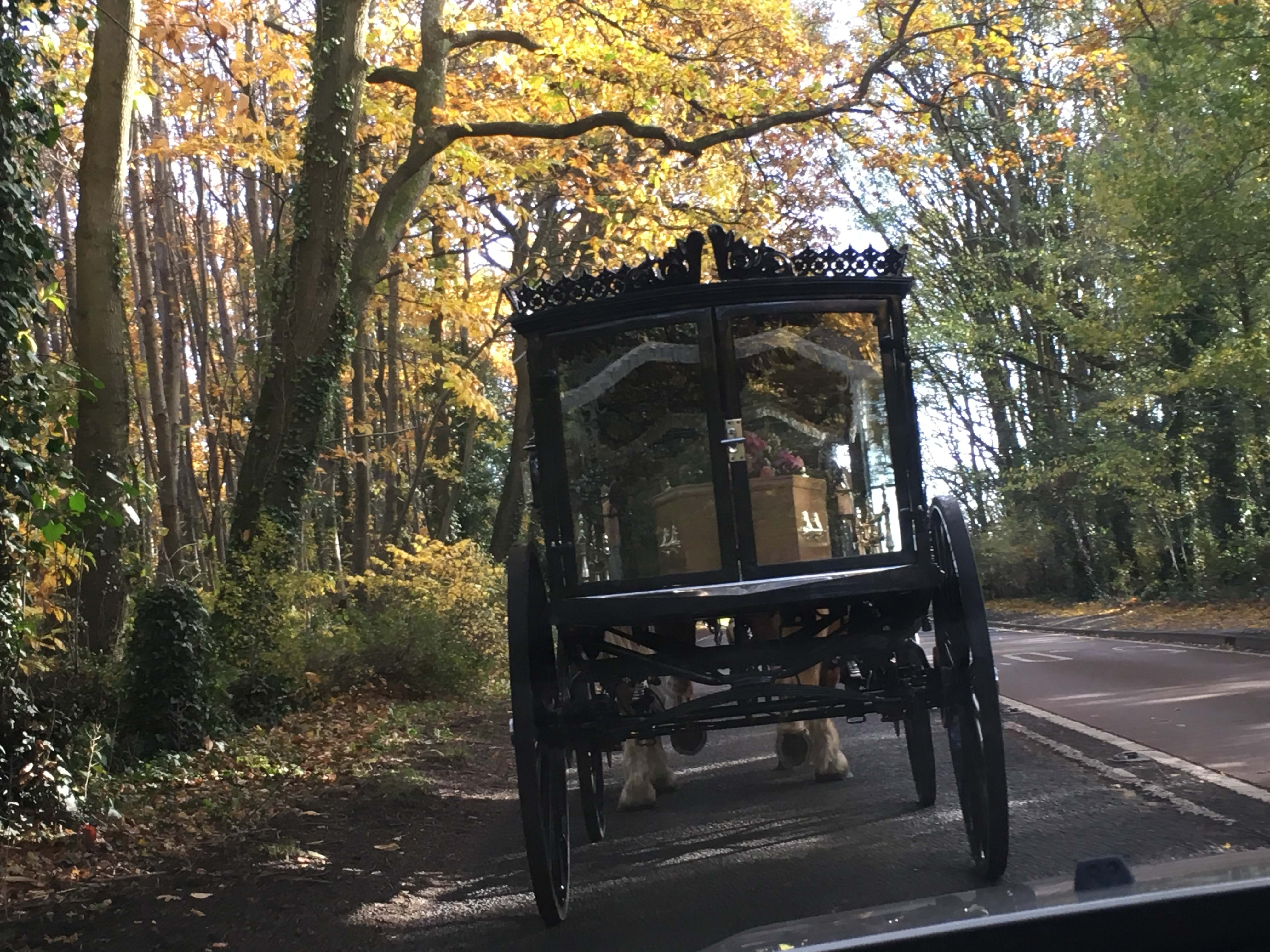 Horse drawn hearse going down a country lane